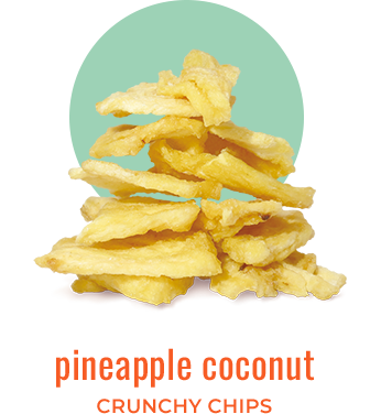 pineapple coconut crunchy chips