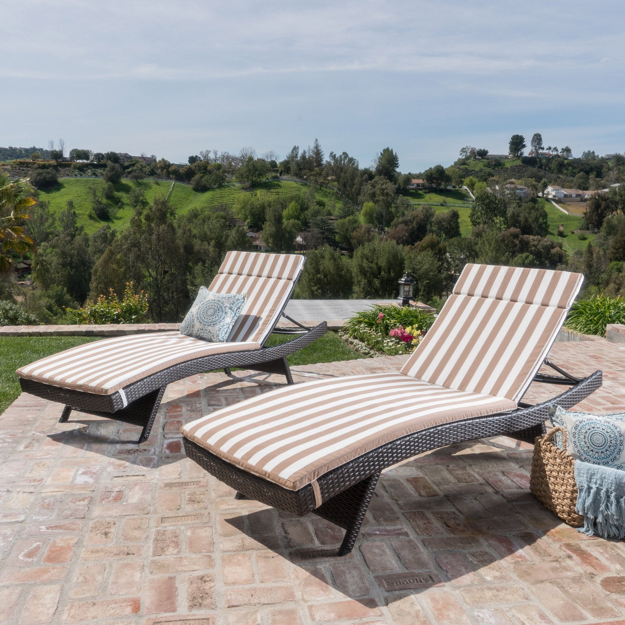 Sagan Outdoor And Water Resistant Chaise Lounge Cushions (Set Of 2)