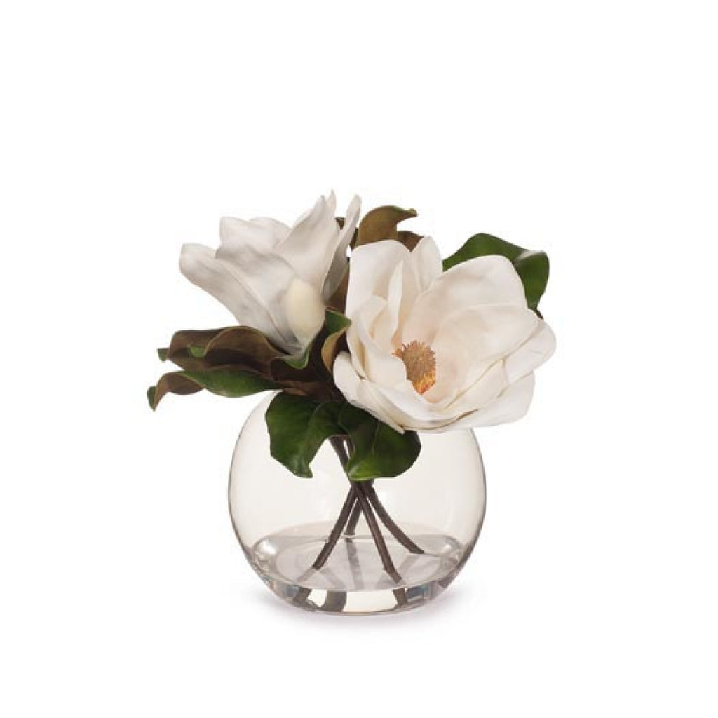 Magnolia in Ball Vase