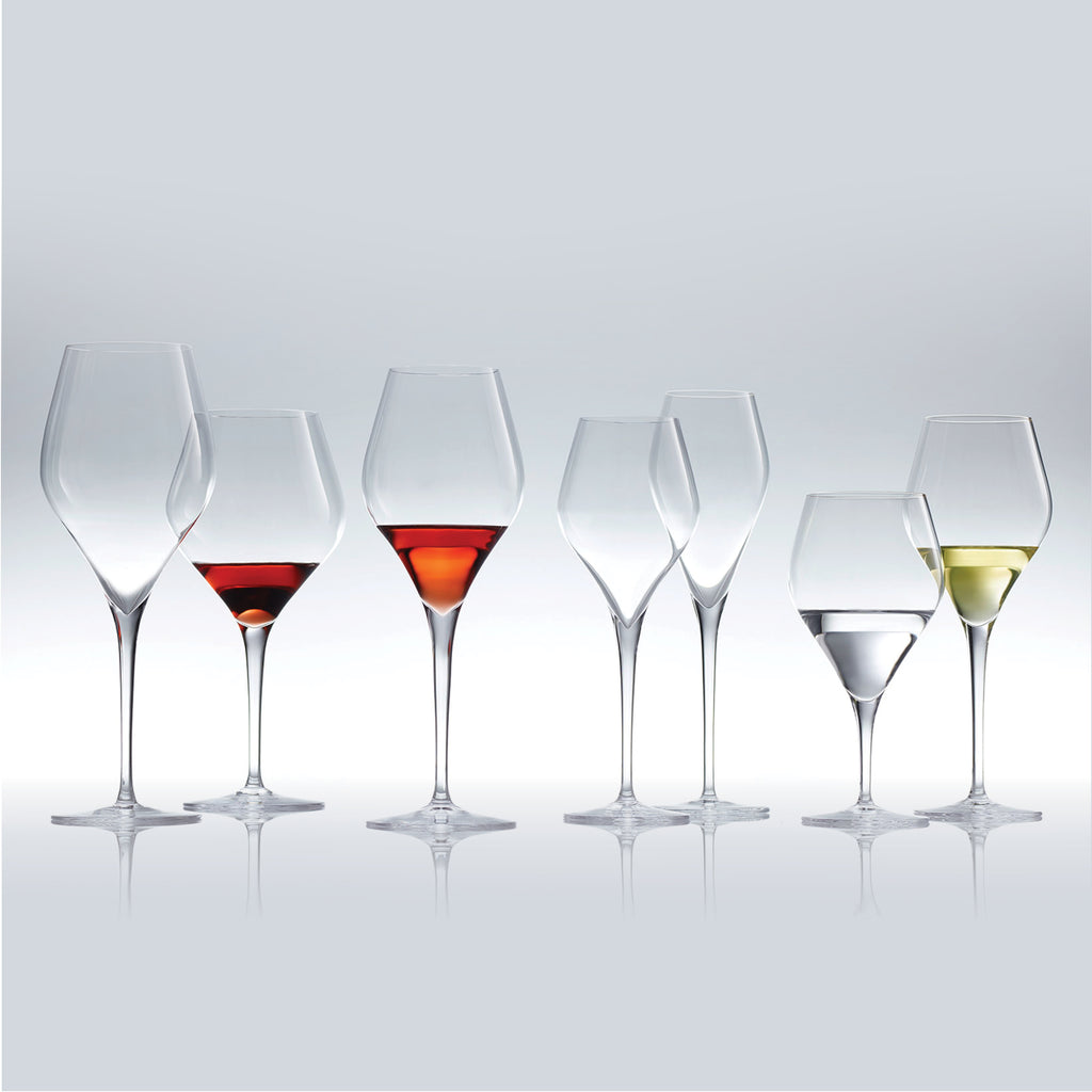 Schott Zwiesel / Finesse / Burgundy Wine Glass / Set of 6