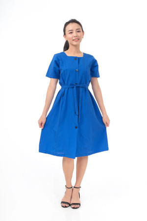 Cecy Dress in Blue