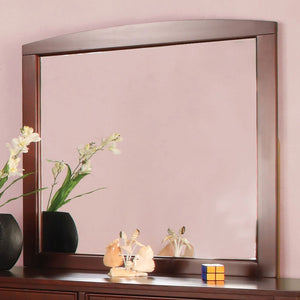 Omnus Transitional Mirror - InteriorDesignsToGo.com