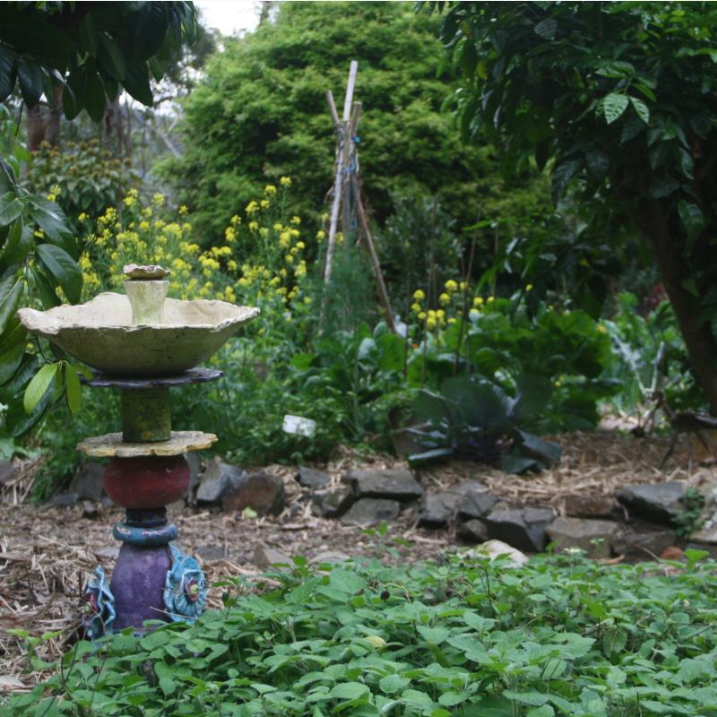 bird bath in herb garden
