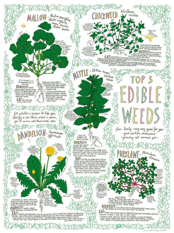 Top 5 Edible Weed Poster