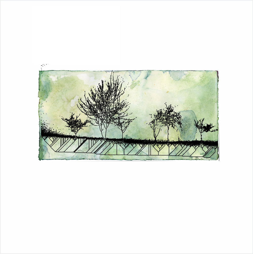 Gift Card - Evergreen Landscape
