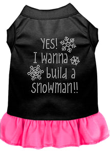 Yes! I Want To Build A Snowman Rhinestone Dog Dress