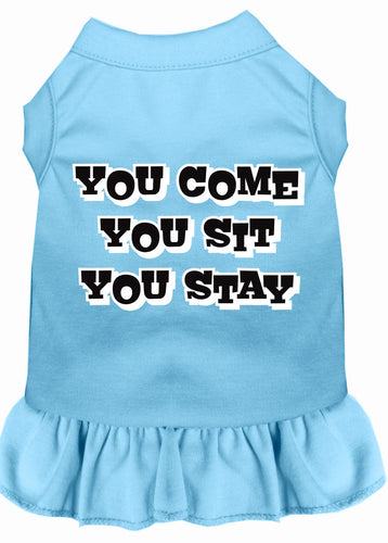 You Come, You Sit, You Stay Screen Print Dress Baby Blue