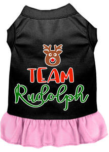 Team Rudolph Screen Print Dog Dress