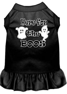 Here For The Boos Screen Print Dog Dress