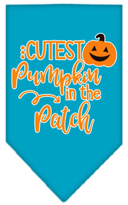 Cutest Pumpkin In The Patch Screen Print Bandana