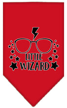 Load image into Gallery viewer, Little Wizard Screen Print Bandana