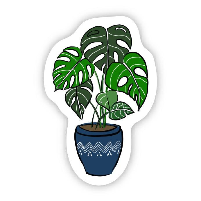 Houseplant - Blue Pot