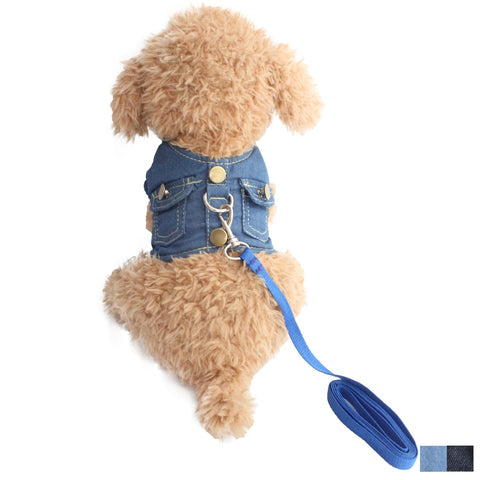 Denim Jeans Harness + Leash