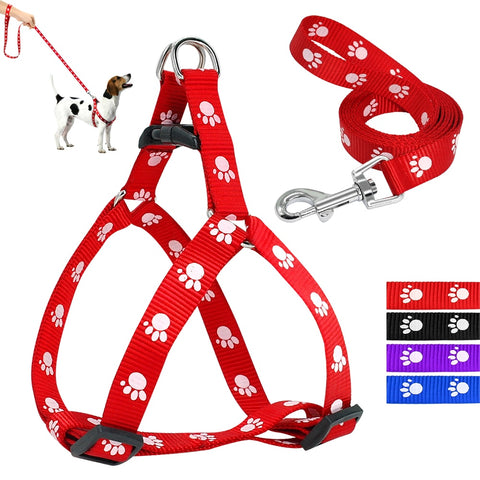 Paw Print Small Dog Harness and Leash Set