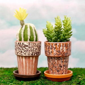 Handpainted Afrocentric Terracotta Pots with green succulents