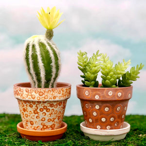 Handpainted Afrocentric Terracotta Pots with cactus succulents