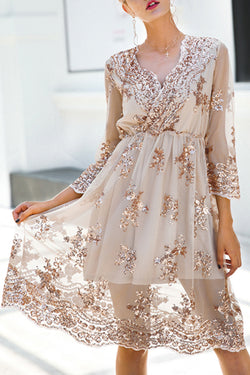 Secret to Sweetness V-neck Sequin Dress