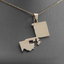Load image into Gallery viewer, Gerrymander Necklaces and Pins