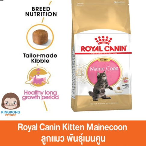 Royal canin Kitten Mainecoon 10kg.