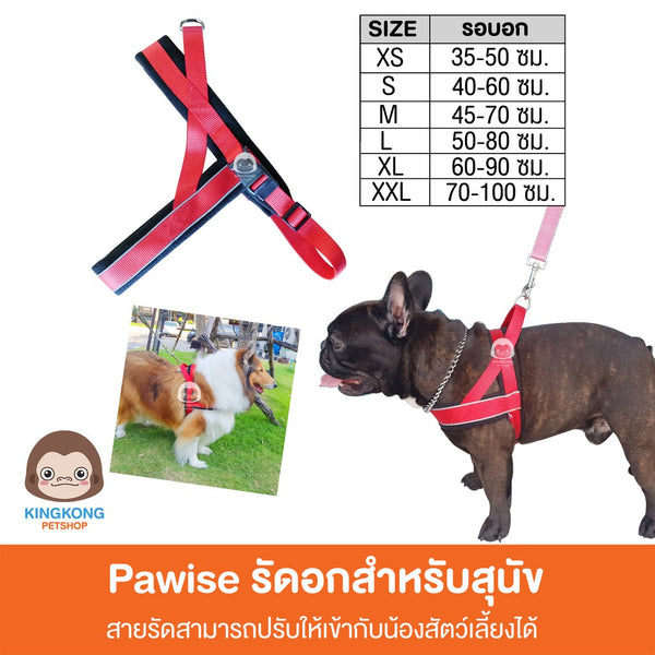 Pawise Reflective Harness รัดอกสุนัข