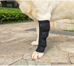 Dog Hock Brace Supportive Rear Dog Compression Leg Joint Wrap Protects Wounds - Oz-Onestop Wholesales
