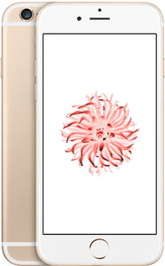 iPhone 6 64GB Gold (T-Mobile)