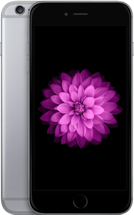 iPhone 6 Plus 64GB Space Gray (GSM Unlocked)