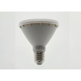 PAR30 Led Globe - Crystal Palace Lighting