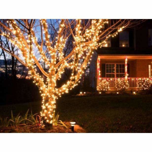 LED Rubber String Lights 200 bulbs - Crystal Palace Lighting
