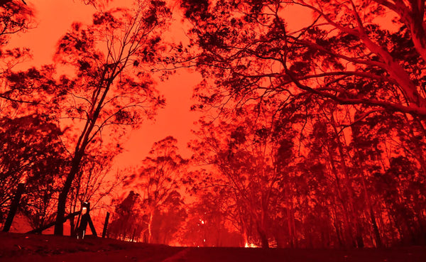 PSL Donates to the NZ Effort Fighting Bush Fires In Australia