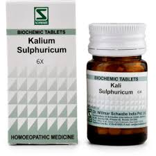 Dr Willmar Schwabe India Kali Sulphuricum Biochemic Tablet 6X 20gm