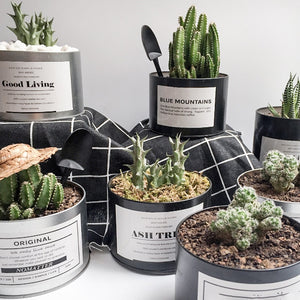 Nortdic Style Metal Can - Plant Pot / Desk Organiser