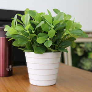 Green Artificial Desk Plant