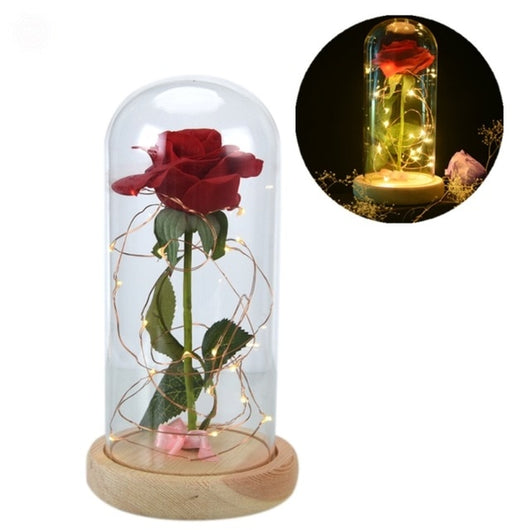 Valentines Gift - Red Rose w/ Fallen Petals in a Glass Dome - seasonBlack