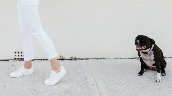WALKING IN STYLE // IN PARTNERSHIP WITH MOSMAN VET