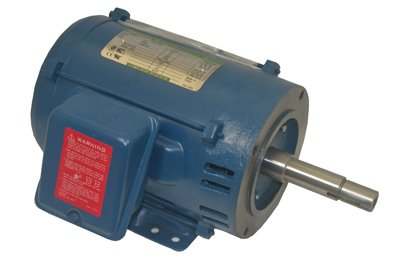 Pentair C218-191 Single Phase Motor Replacement Pool and Spa Commercial Pump, 200-Volt, 60-Hertz