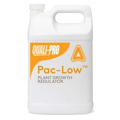 TIDE PACLO 2SC GALLON