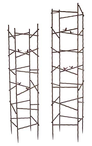 "Diva At Home 56"" H, 64"" Trellis Metal Green, Red (Set of 2)"