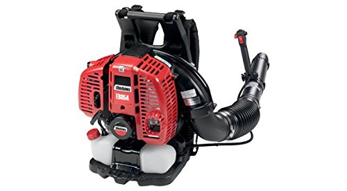 SHINDAIWA Backpack Blower