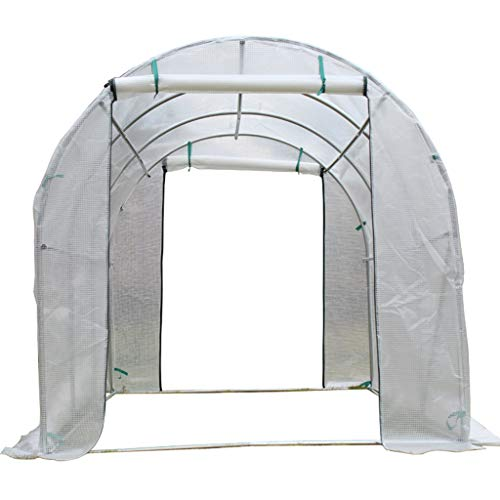 ZAQI Heavy Duty Large Greenhouse, Portable Garden Outddoor Transparent Walk-in Hot Green House, 25mm Steel Pipe, 3×2×2m