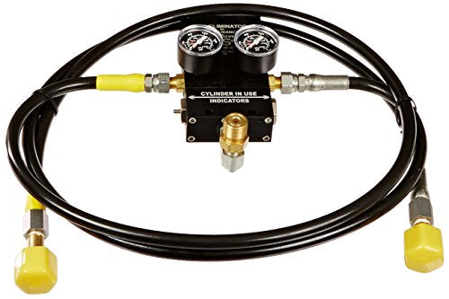Hayward AC006 2-Tank CO2 Auto Switch Over Replacement for Hayward CO2 pH Control Systems