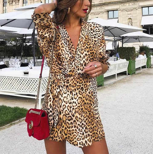 Casual Fashion Sexy V-Neck Band With Leopard Print Long-Sleeve Mini Dress