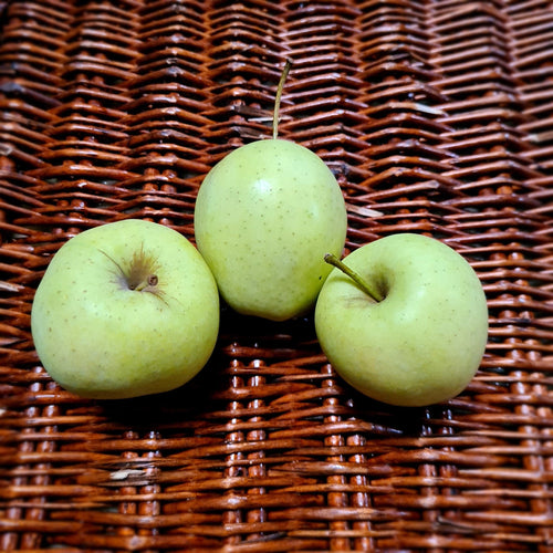 Watson's Veggies - Golden Delicious Apples