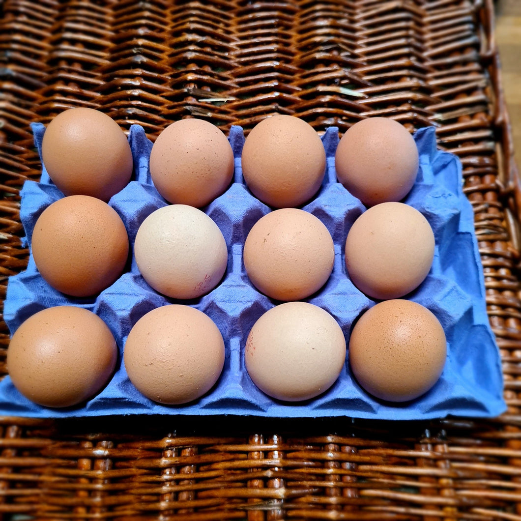 Watson's Veggies - Local Free Range Eggs (dozen)