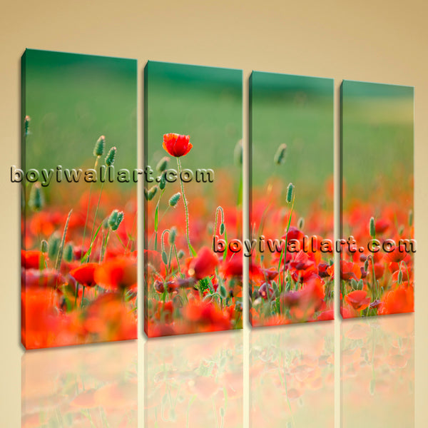 Poppy Flower artwork