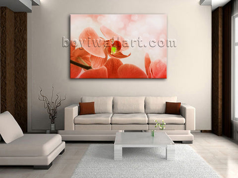 Orchid Flower wall art