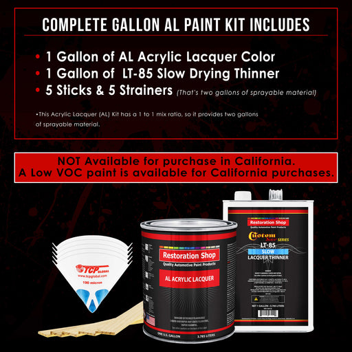 Pewter Silver Metallic - Acrylic Lacquer Auto Paint - Complete Gallon Paint Kit with Slow Dry Thinner - Professional Gloss Automotive, Car, Truck, Guitar, Furniture Refinish Coating