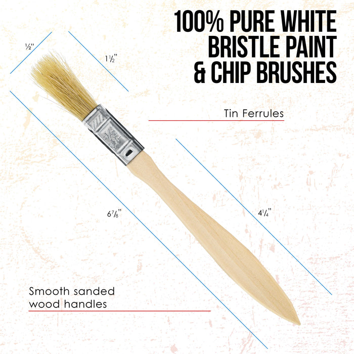 36 Pack of 1/2 inch Paint and Chip Paint Brushes for Paint, Stains, Varnishes, Glues, and Gesso