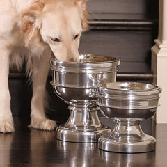Finley Chalice Raised Dog Bowl
