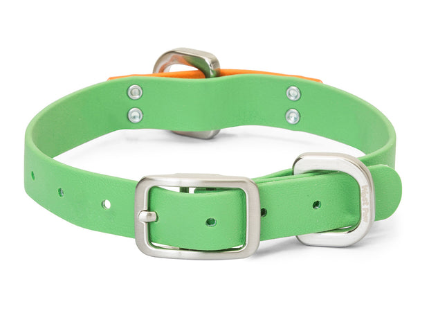 Jaunts Collar by West Paw